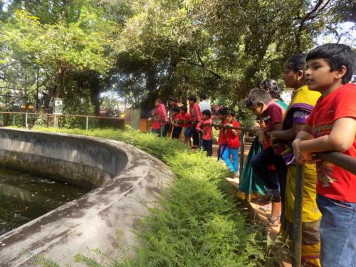 Field Trip to Thrissur